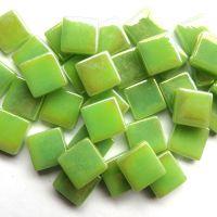 003p Iridised Mint Green: 100g