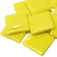 030 Opal Yellow