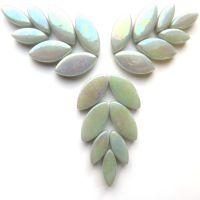 042p Iridised Pale Grey Petals: 50g