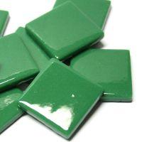 055 Spruce Green: 100g