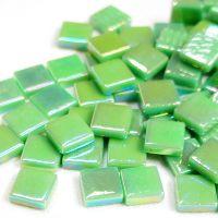 019p Iridised Meadow Green