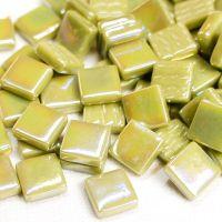 044p Iridised Light Olive