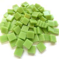 003 Matte Mint Green