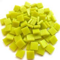 029 Matte Yellow Green: 100g