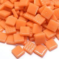 103 Apricot