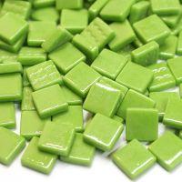011 New Green: 100g