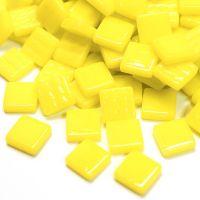 028 Acid Yellow: 100g