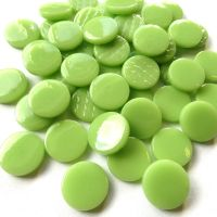 003 Mint Green: 100g
