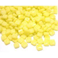 027 Daffodil Yellow