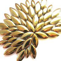 H01 Gold: 50g