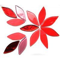 Hibiscus Mix: 12 Pieces