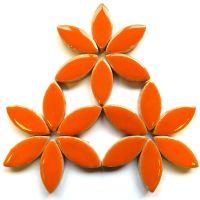 H6 Popsicle Orange 25mm Petal: 50g