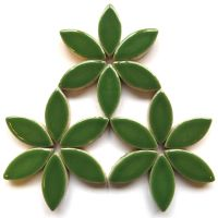 H141 Eucalyptus 25mm Petal