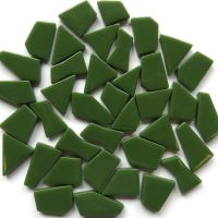 037 Pine Green: 100g