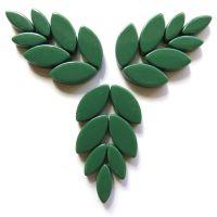055 Spruce Petals