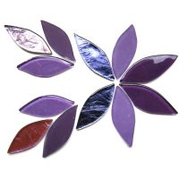 Iris Mix: 12 Pieces