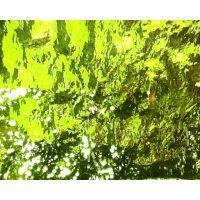 Verde Erba Media Mirror: 5x10cm