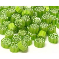 6/7 Lime Green 1000g