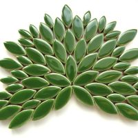H141 Eucalyptus: 50g