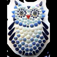 New Owlet: Blue