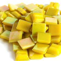 Mini Yellow Citirine