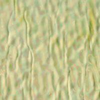 Grasshopper Pearlescent